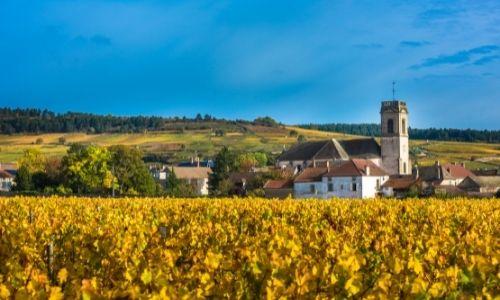 vinhos mais caros do mundo